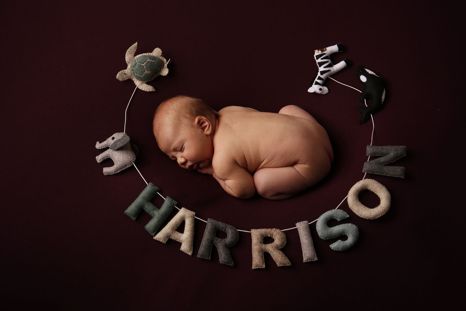 Newborn-Photographers-Manchester-016